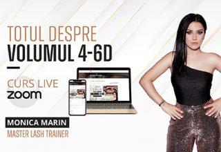 Curs ZOOM Live – Totul Despre Volumul 4-6D