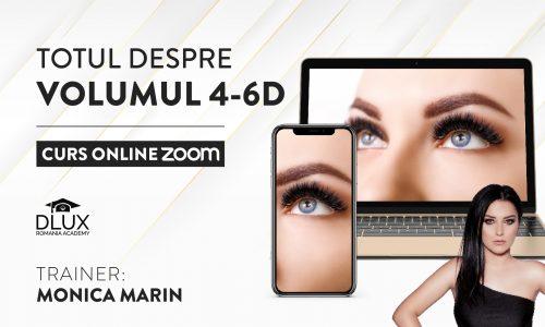 Curs ZOOM Live – Volumul 4-6D