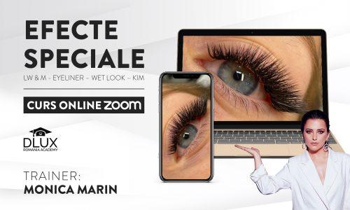 Curs ZOOM Live – Efecte Speciale – LW & M CURLS  Eyeliner – Wet Look – Kim