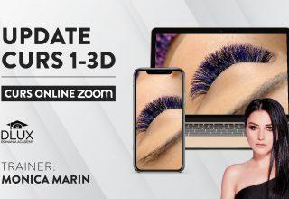 Curs ZOOM Live – Update 1-3D